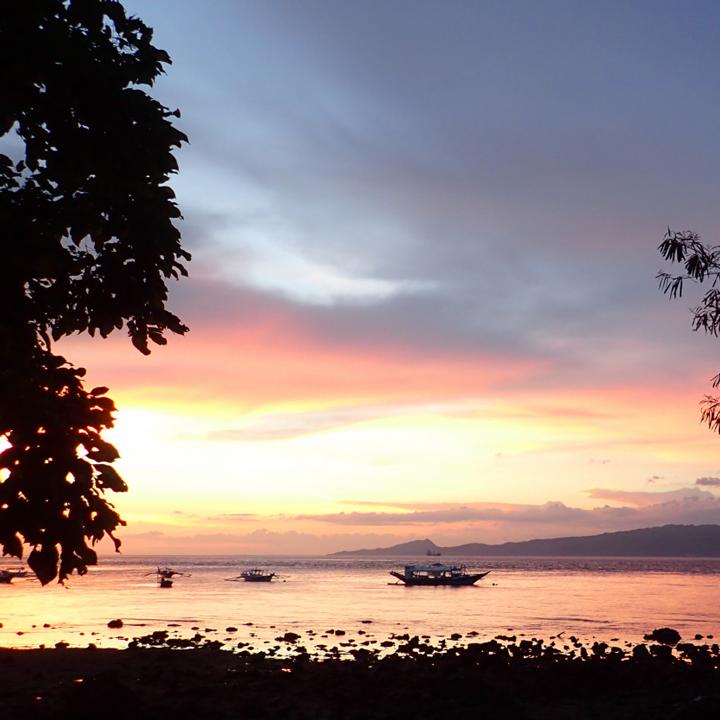夕暮れ時のビーチを散歩、自然がいっぱいのプエルトガレラ。ダイビングだけではもったいない!