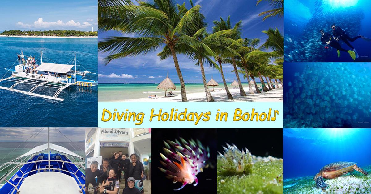 """うみくらぶフィリピンは、""""Alona Divers"""" の代理店です。"""