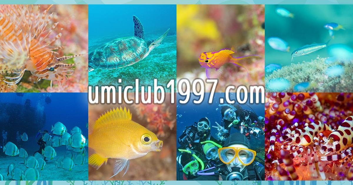 umiclub1997.comメインビジュアル