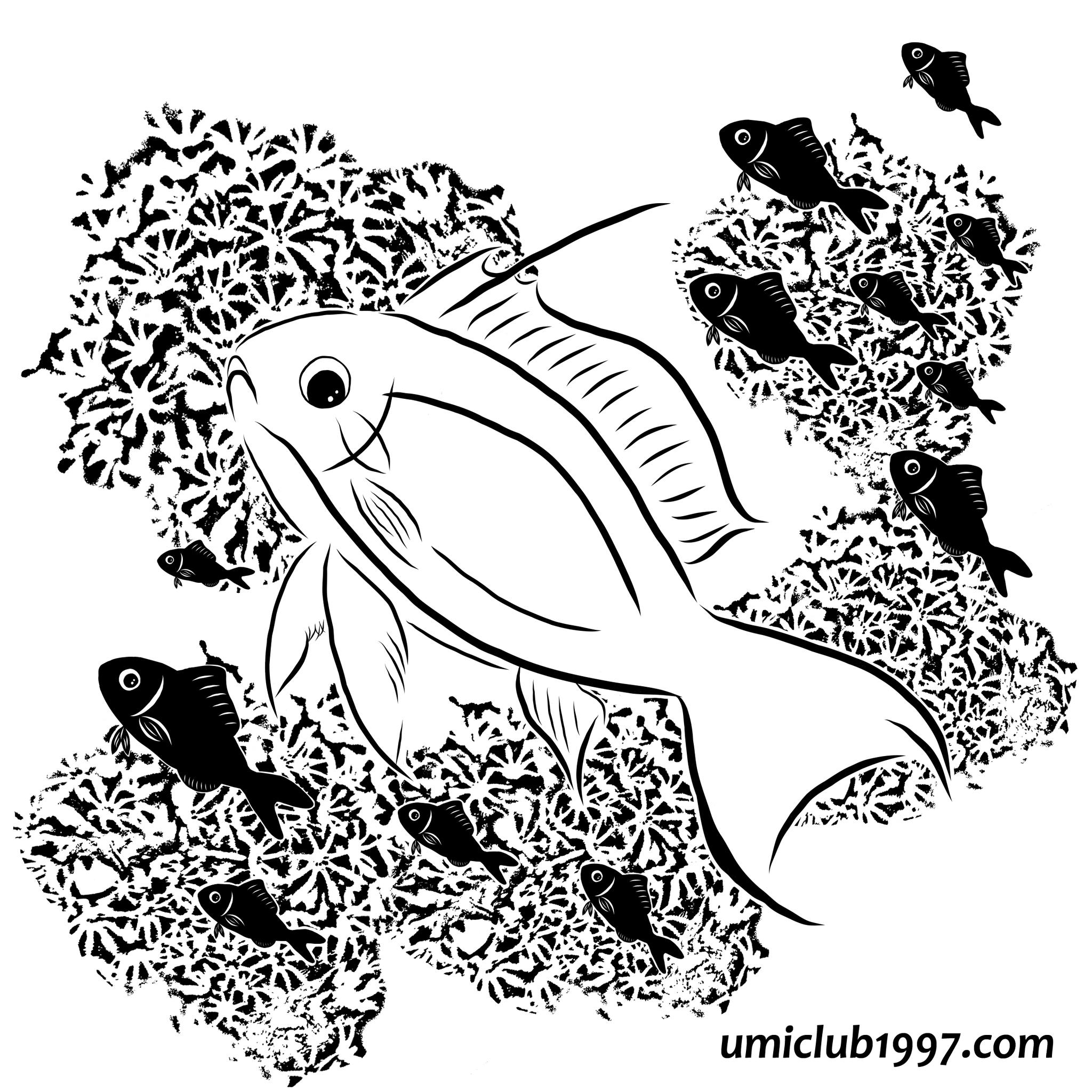 キンギョハナダイ-モノクロイラスト
