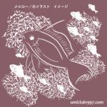 メルロー/白イラスト拡大