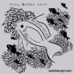 アッシュ/黒イラスト拡大